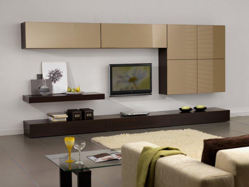 Корпусная мебель в зал квартиры.